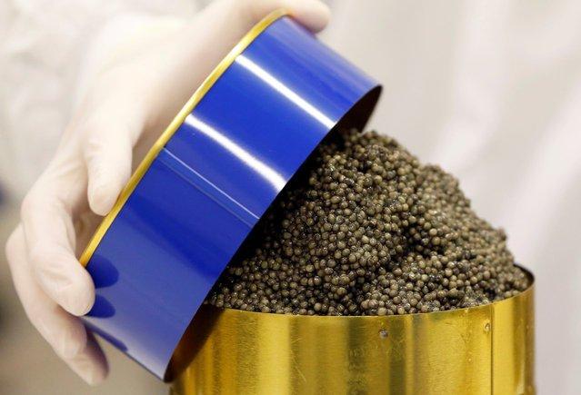 Производство черной икры