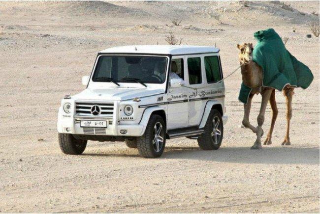 Серые будни местного населения в Дубаи