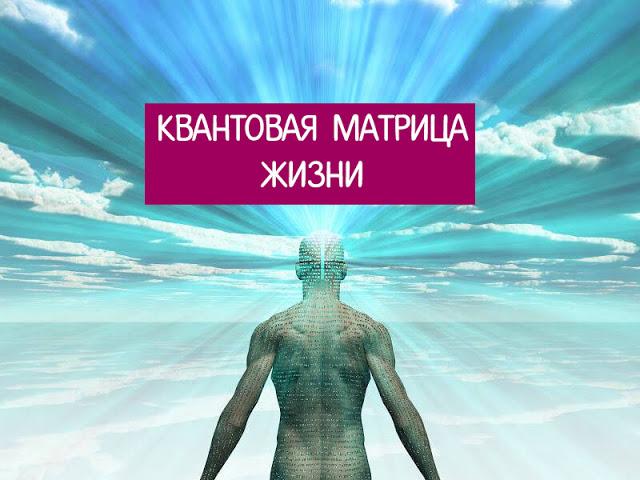 Квантовая матрица жизни