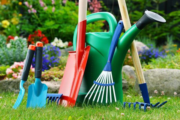 Раствор марганцовки - простое и недорогое средство для дезинфекции садового инструмента