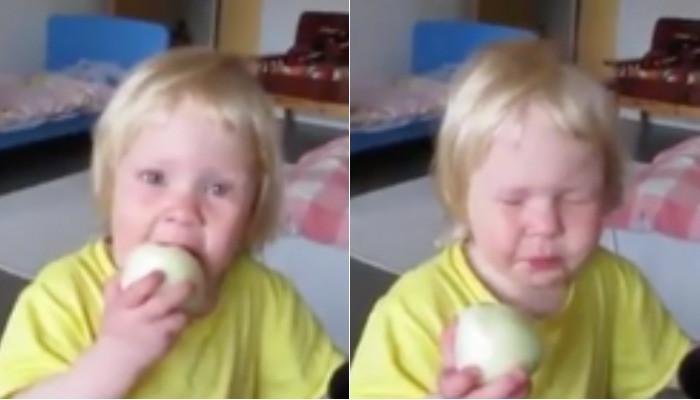 Этот малыш слишком упрям, чтобы признать: луковица, которую он ест, — это вовсе не яблоко
