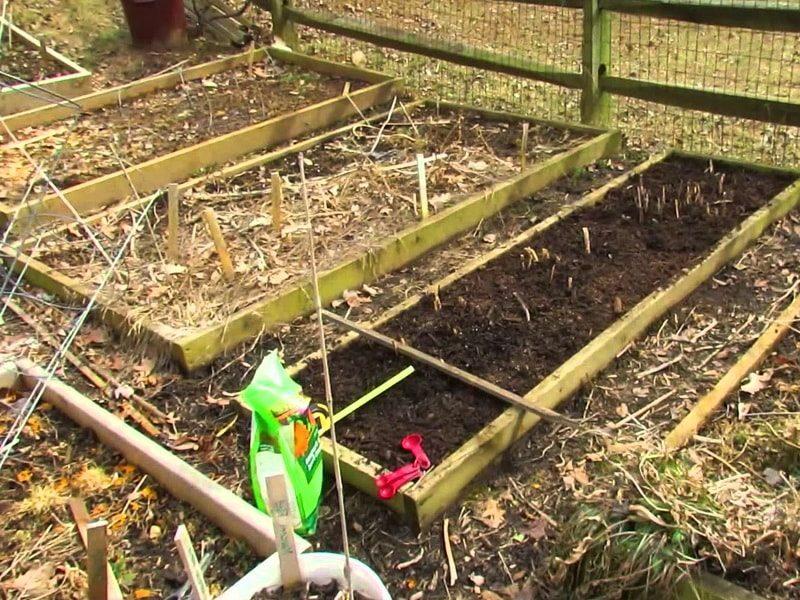 Подготовка почвы весной для начинающих дачников