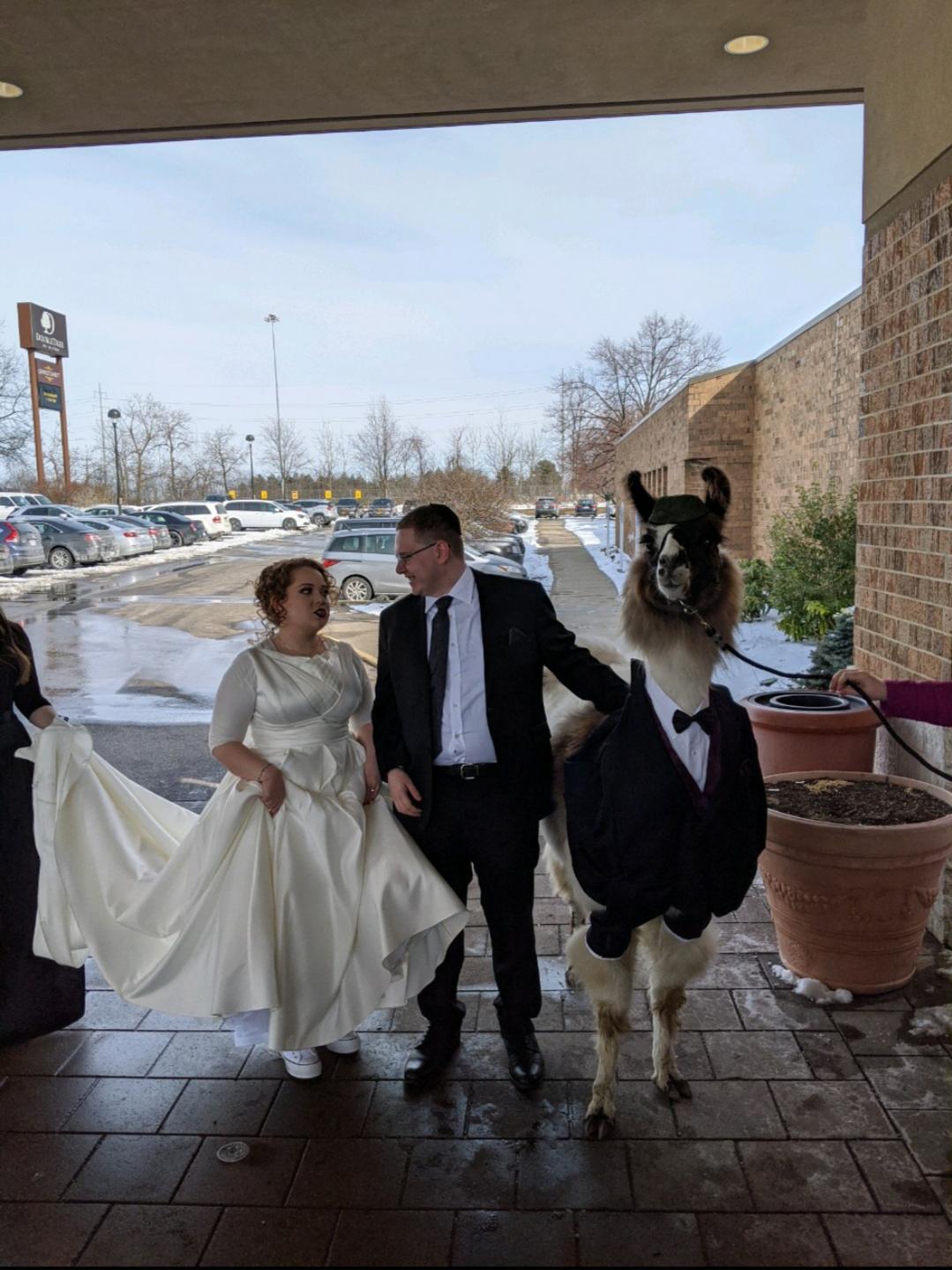 14 случаев, когда невесты точно запомнили свои свадьбы на всю жизнь, хотя хотели бы наоборот