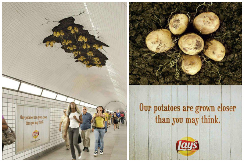 Картошка, везде картошка геиально, дизайн, интересное, красиво, реклама