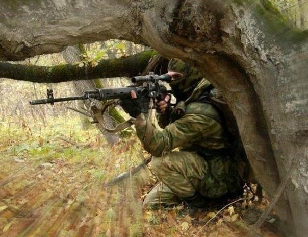 Картинки по запросу снайпер за деревом