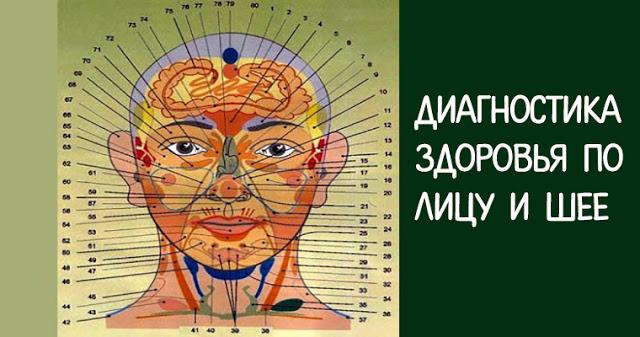 Диагностика здоровья по лицу и шее