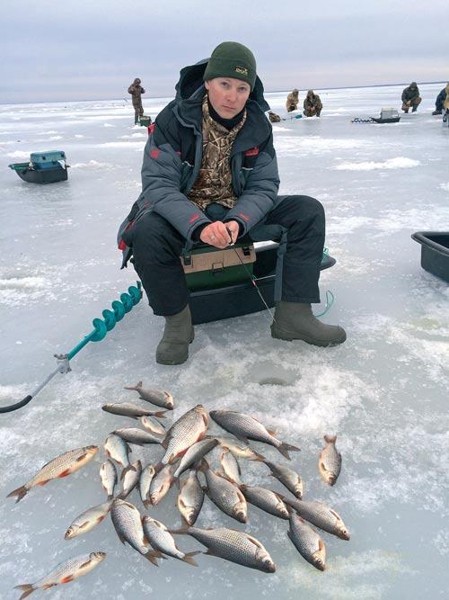 Безмотылка рыболова-любителя
