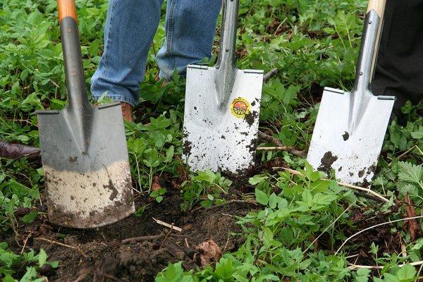 Как я перестала копать землю