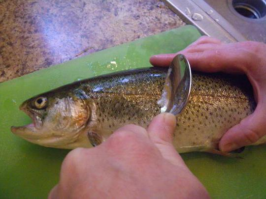 Как очень легко почистить рыбу