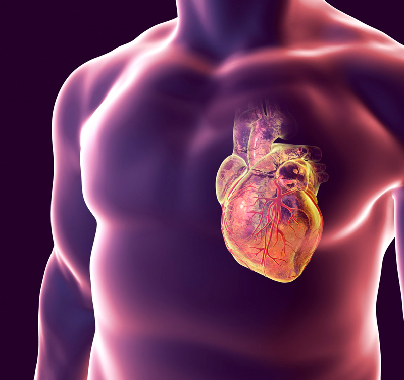 Всё о кардионеврозе