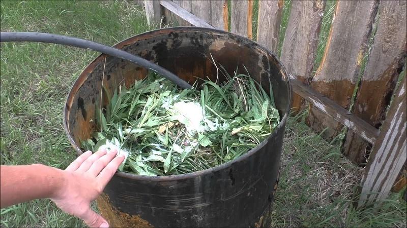 удобрение из зеленой травы