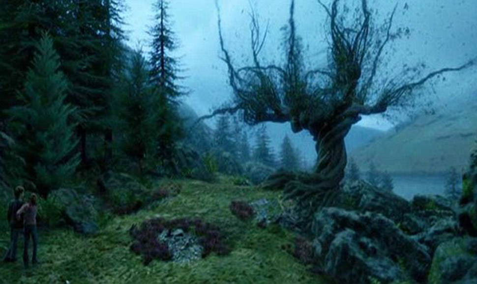 Самые известные вмире деревья, прославившиеся вкино, музыке иживописи