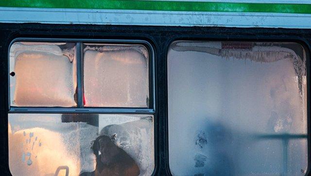 И никто не заметил: На Камчатке автобус 1,5км тащил по дороге женщину, выпавшую из него