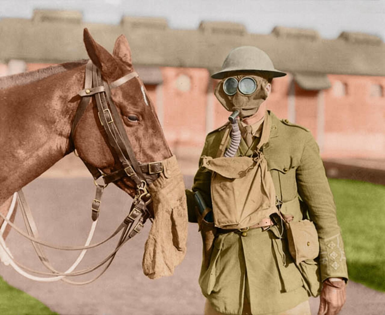 Солдат ветеринарного корпуса канадской армии и его конь в противогазах архивное фото, колоризация, колоризация фотографий, колоризированные снимки, первая мировая, первая мировая война, фото войны