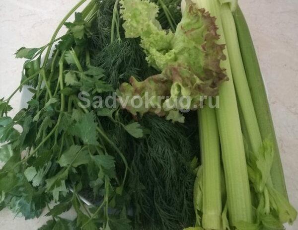 Богатая витаминами зелень