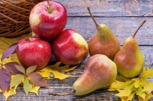 Яблоки и груши: готовим вкусные десерты и делаем заготовки на зиму