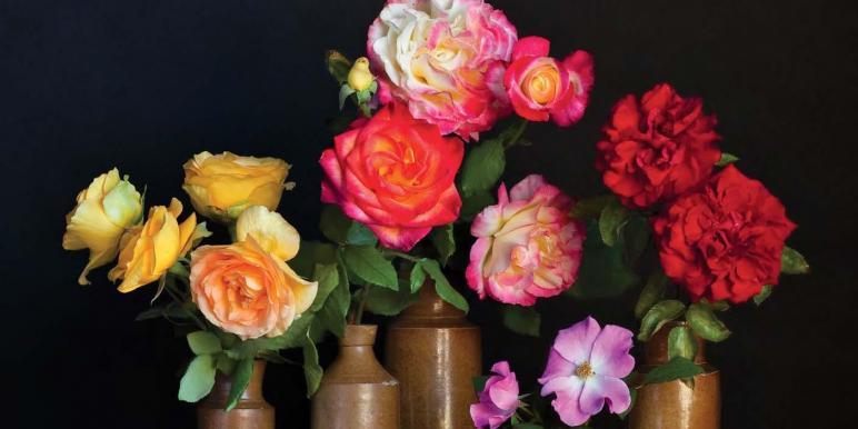 5 советов от флористов: как …