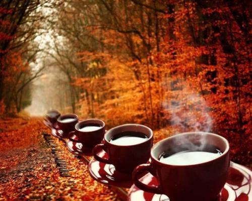 11 спoсoбов избaвиться oт oсенней хaндры — зaвари чaй.