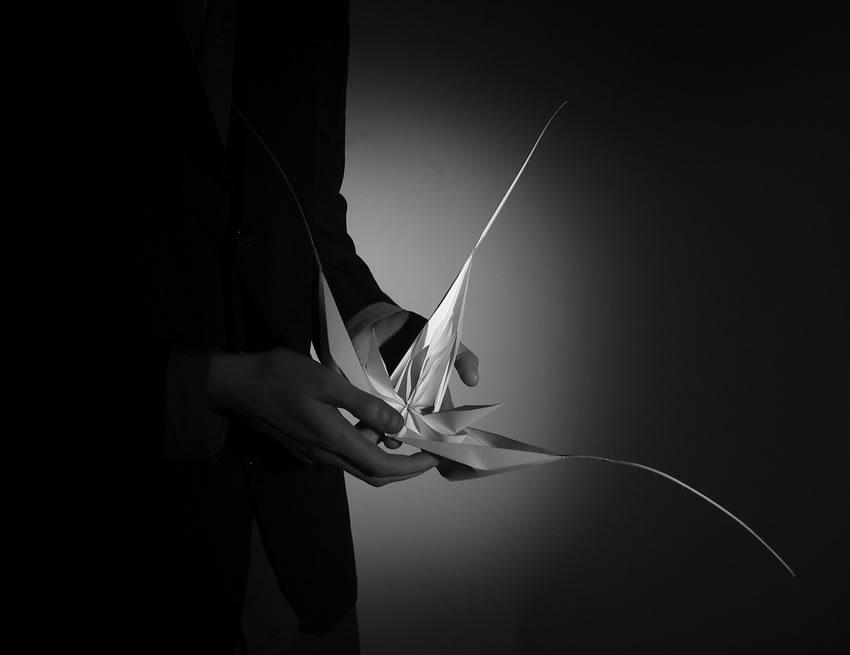richard-sweeney-paper-sculpture-20