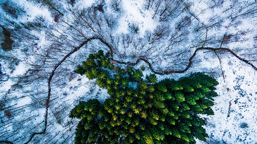best-drone-photography-2016-dronestagram-contest-8-5783ac87ae38c__880
