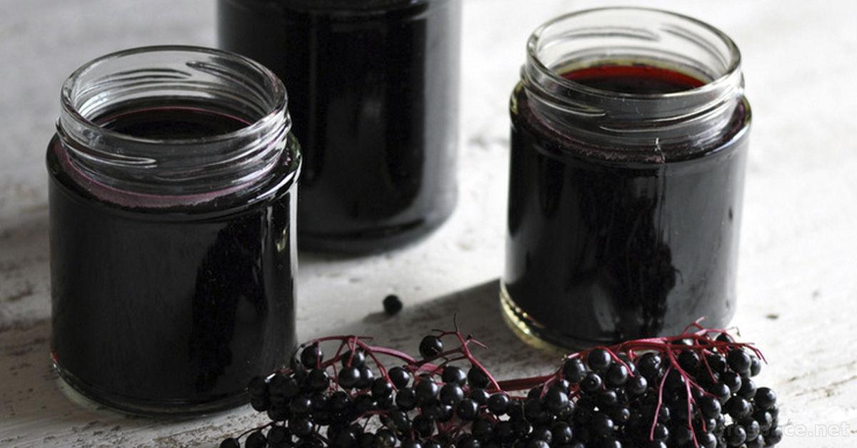 Применяя ягоды черной бузины вы избавитесь от простуды в 2 раза быстрее!
