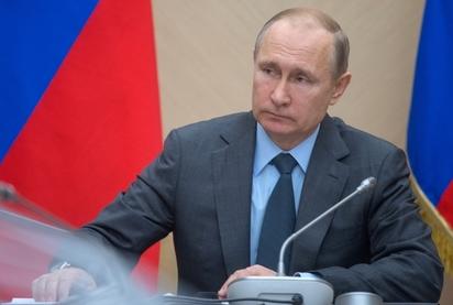 Путин подписал закон о свободном сборе валежника в лесу