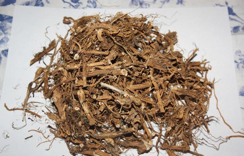 листья крапивы польза и вред