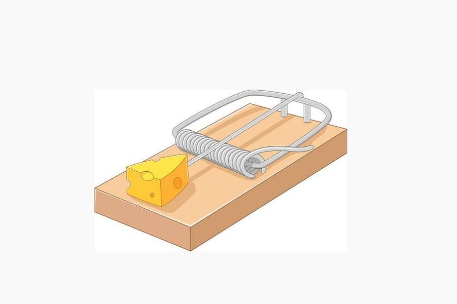 Бесплатный сыр или чего хотят пенсионеры