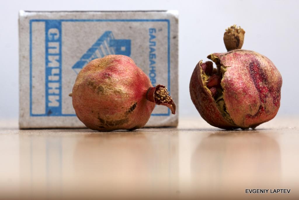 Плоды нанокомпакта