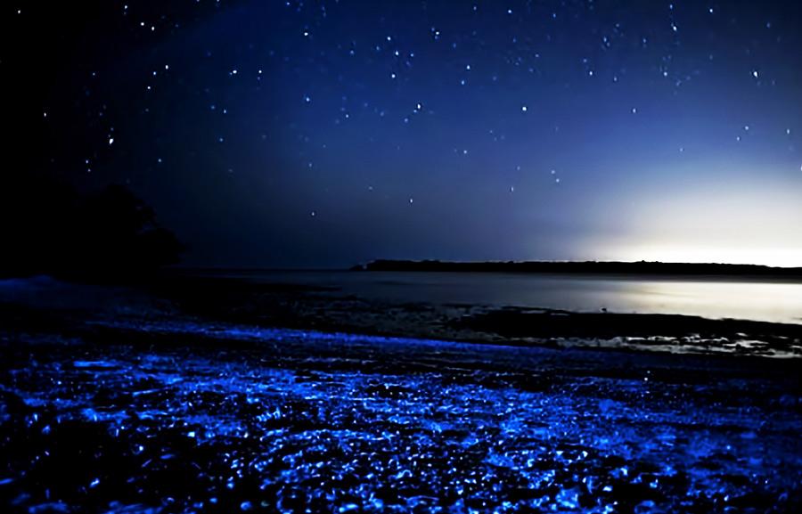 Самые красивые заливы мира