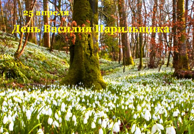 25 апреля народный праздник Василия Парильщика