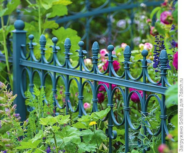 Кованый забор выглядит очень эффектно и придает палисаднику романтичный вид. Цвет и дизайн такого ограждения могут быть самыми разными, главное, чтобы элемент вписывался в общий стиль сада.
