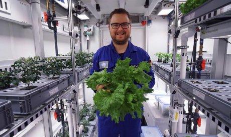 В Антарктике вырастили первый урожай овощей без грунта и солнечного света