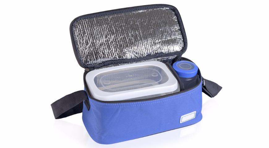 Идея для пикника: сумка холодильник или холодильник в авто