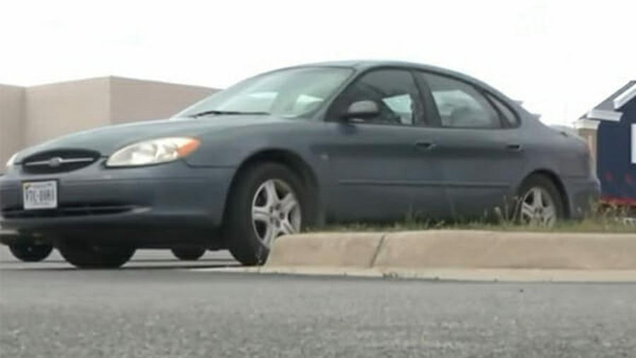 Бабушка направила автомобиль в сторону дома, внук ехавший вместе с ней увидел на земле то, мимо чего он просто не смог проехать!