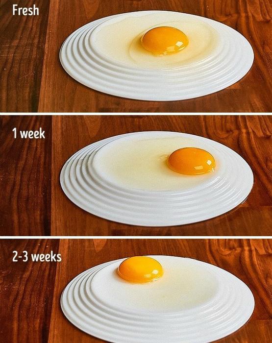 Проверка свежести яиц. | Фото: Incrível.club.