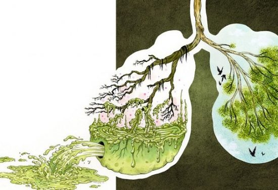 Очищаем организм от паразитов и уменьшаем отложения жира.