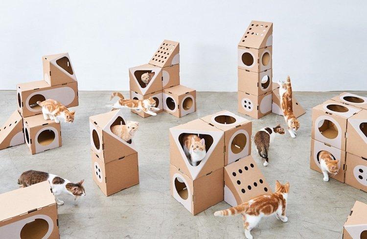 Кошачьи радости: модульные домики для кошек из картонных коробок
