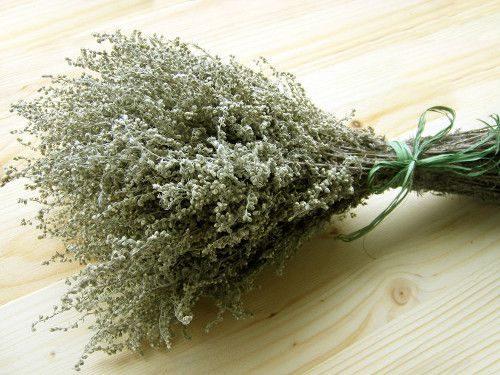 Травы - обереги от сглаза и порчи