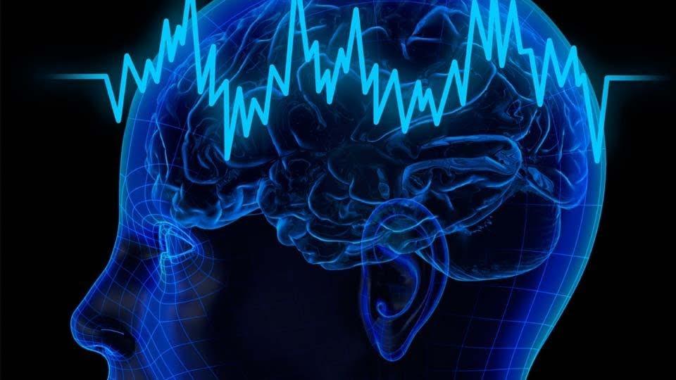 Апгрейд мозга