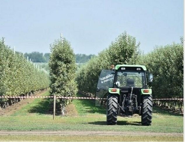Краснодарский край увеличивает закладку садов
