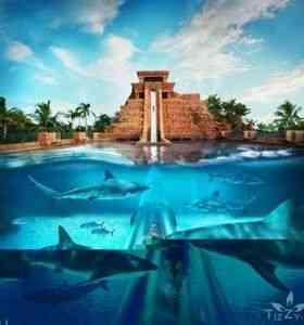 Самые знаменитые аквапарки мира