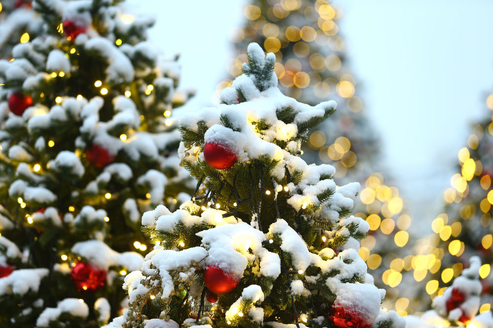 Какая погода ждет россиян в декабре