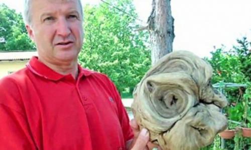 В Хорватии нашли голову инопланетного существа