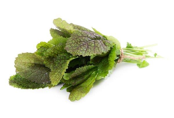 Горчица листовая: регулярное употребление укрепляет сердечную мышцу