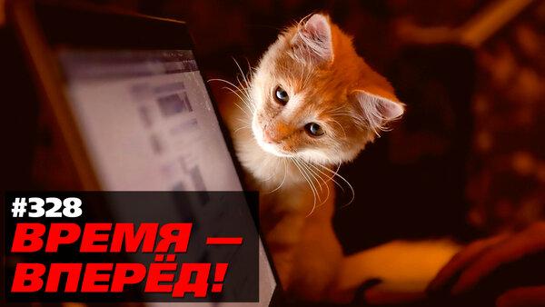 """Россия готовится к отключению от Интернета. И это правильно!  """"ВРЕМЯ - ВПЕРЁД!"""" №328"""