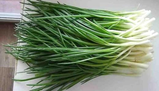 Удивительный способ выращивания зеленого лука без земли