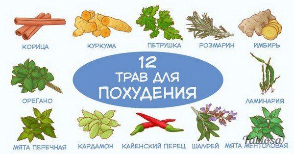 12 трав и специй, которые помогают сбросить лишний вес.