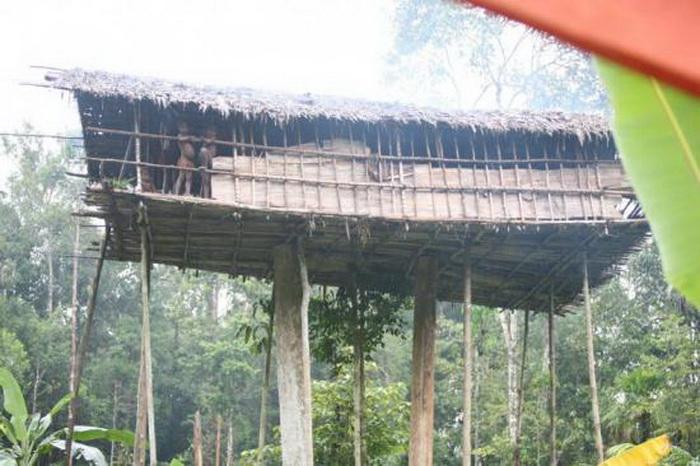 Дом на дереве - традиционное жилище в племени короваи
