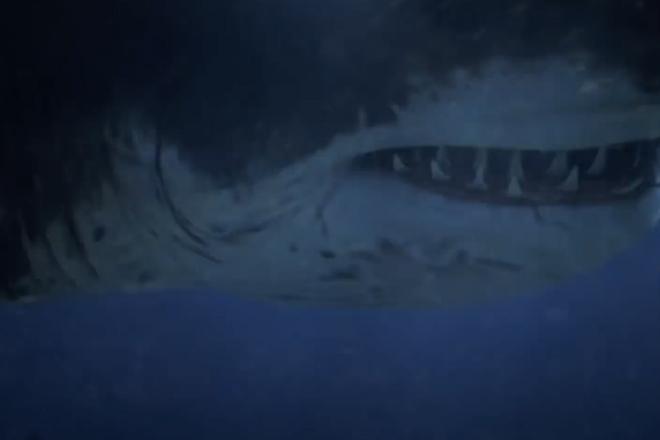 На пляже Австралии нашли зубы огромной акулы жившей 25 миллионов лет назад